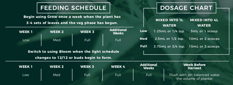 Cannabis feeding chart